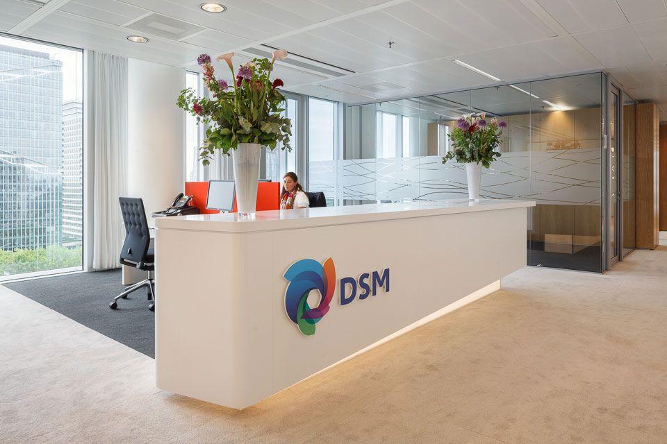 Logge Bedrijven DSM-Balie
